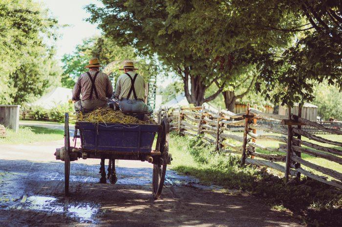 stories old men riding cart